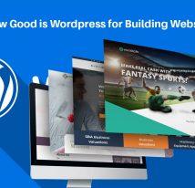 How good is wordpress for building website